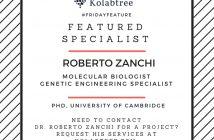 featured freelancer-zanchi