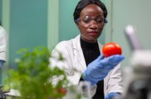 Lebensmittelwissenschaftler einstellen