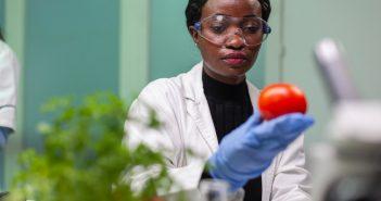 contratação de cientistas de alimentos